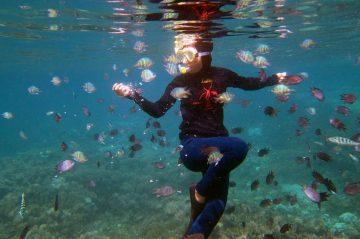 Bermain Bareng Nemo di Gili Kondo